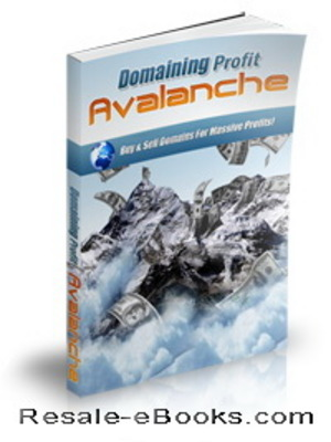 Product picture *NEW!* Domaining Profits Avalanche Audio Video Ebook MRR