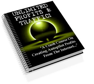 Product picture *NEW!*  Unlimited Profits & Traffic - MASTER RESALE RIGHTS