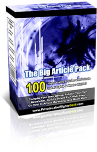 Product picture *NEW* The Big Article Pack | Get Full PLR & Master Rights to 100 High Quality Articles!